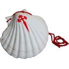 Shell of the Pilgrim | Vieira Camino de Santiago